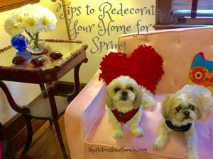 Tips to Redecorate Your Home for Spring